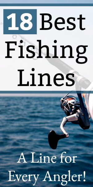 Best Fishing Line: 18 Lines for Every Angler